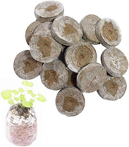 Kokos Quelltabletten Mit Nährstoffen, Premium Anzucht Quelltabs, Zur Pflanzen Anzucht, Anzucht Von Stecklingen, Sämlingen Und Saaten (50 Stück)