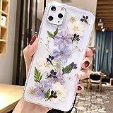 iPhone 11 Hülle Handyhülle Getrocknete Blumen Hülle Kristall Gel Schutzhülle Blume Bumper Superdünn Cover Schale Schutzhülle für Apple iPhone 11, Lila weiß Blumen Trompete