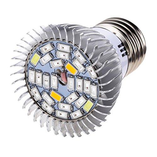 MagiDeal E27 Conduit Lampe Ampoule Croissante pour Fleur D'intérieur Lampe de Croissance - 10W 28LEDS