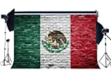 Wofawofa Vinyl 7X5FT Mexican Flag Backdrop Shabby Brick Wallpaper Eagle Creative Photography Background for Person Wishing Independence and Hope Peace Religion National Unity Photo Studio Props KX572