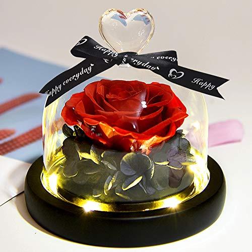 ZLDM Veritable Rose Eternelle sous avec Lumières LED, Fait Main Naturelle éternelle Rose Rouge, Rose Deco La Belle Et La Bête, Lumières LED Et Cloche en Verre sur Un Socle en Bois, Rouge