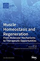 Muscle Homeostasis and Regeneration: From Molecular Mechanisms to Therapeutic Opportunities