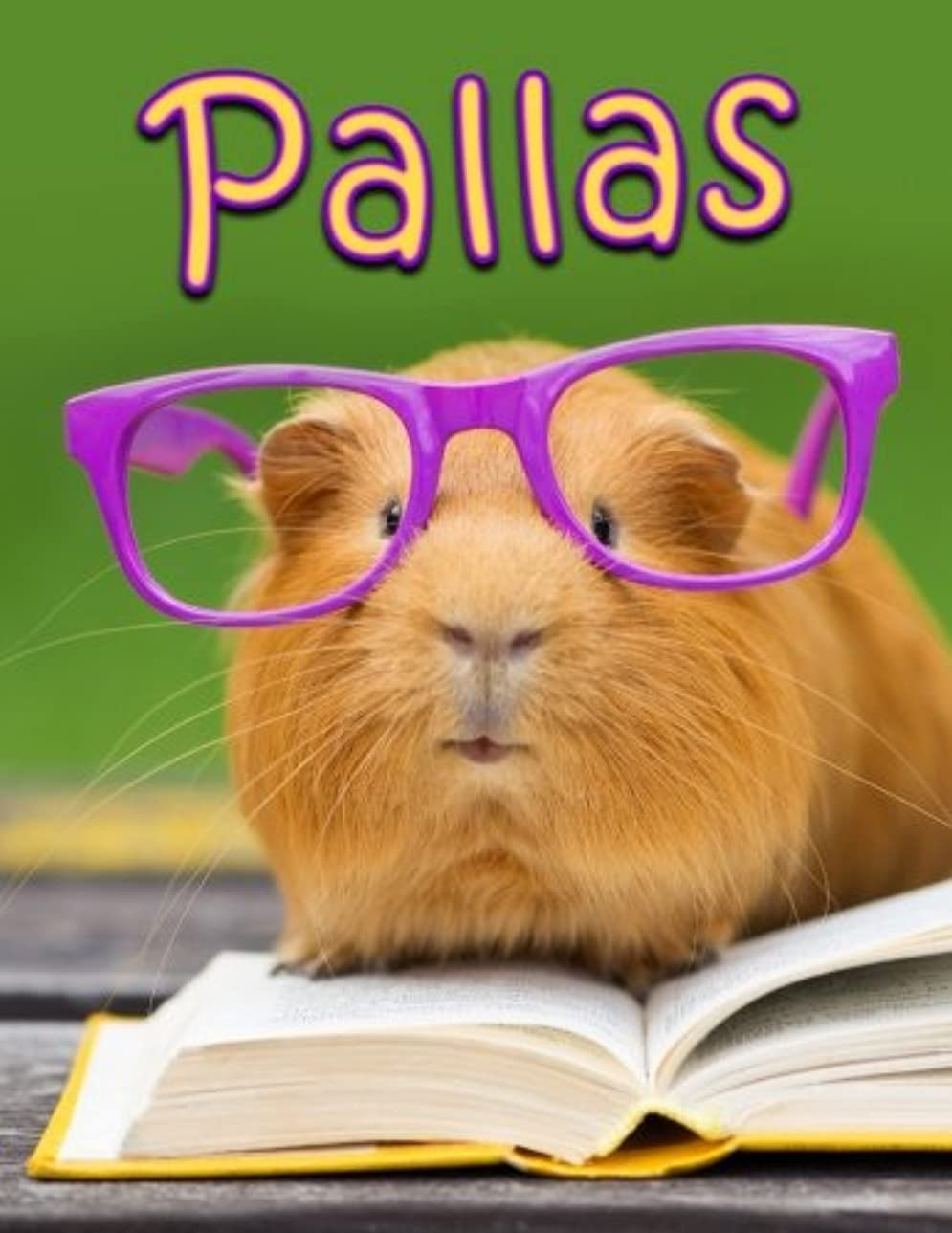 光の思いつく怠Pallas: Personalized Book with Name, Journal, Notebook, Diary, 105 Lined Pages, 8 1/2