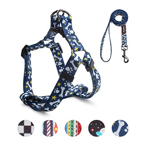 QQPETS Dog Harness Leash Set, Adjustable Heavy Duty No Pull Basic Halter Harnesses for Small Breed Dogs, Back Clip, Anti-Twist, Perfect for Walking (S(14