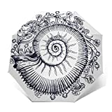 Paraguas Plegable Automático Impermeable Símbolo de la Flor de Ammonites Nouveau,Paraguas De Viaje Compacto A Prueba De Viento, Folding Umbrella, Dosel Reforzado, Mango Ergonómico