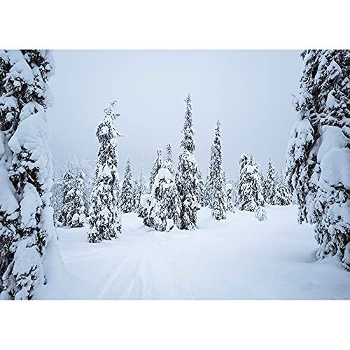 Vinile fotografia sfondo puntelli inverno neve foto fotografia sfondo studio foto puntelli A1 9x6ft 2.7x1.8m