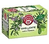 Pompadour 1913 Té de hierbas adelgazantes con hierbas aromáticas con mate y verbena - 1 x 18 bolsitas de té (36 gramos)
