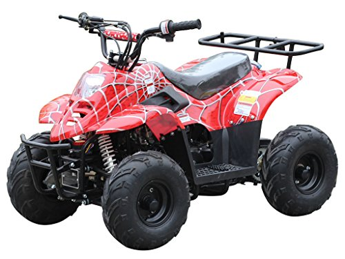 110cc ATV Four Wheelers Fully Automatic 4 Stroke...