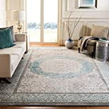 Safavieh Sofia Collection SOF365A Vintage Light Grey and Blue Center Medallion Distressed Area Rug (8' x 11')