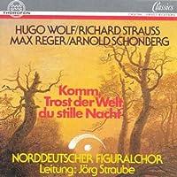 WOLF/STRAUSS/REGER/SCHÖNBERG