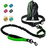 SparklyPets Hands-Free Dog Leash for Medium and Large Dogs – Professional Harness with Reflective Stitches for Training, Walking, Jogging and Running Your Pet (Green, for 1 Dog)