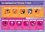 """Components of Physical Fitness 