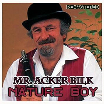 Nature Boy (Remastered)