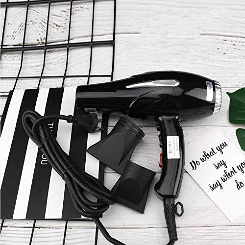 LTLJX Secador de Pelo: Secador de Pelo de Iones Negativos de Pelo de peluquería Suministros secador de Pelo.Negro. LUDEQUAN (Color : Black.)