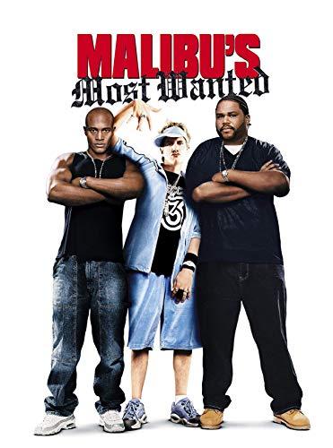 Malibu's Most Wanted: Screenplay (English Edition)