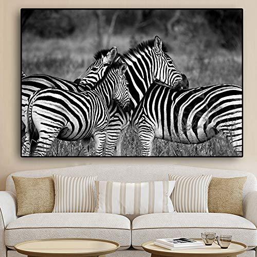Schwarzweiss-afrikanisches Zebra-Wildtier-Landschafts-Leinwand-Malplakat und Druck-Wohnzimmer rahmenloses dekoratives Wandbild Bild A62 50x70cm
