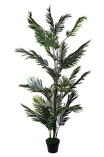 Sarah B XXL Palme Farnpalme Kokos-Palme JWT2578 Riesige Farnpalme 160cm hoch Kunst-Pflanze Zimmerpflanze