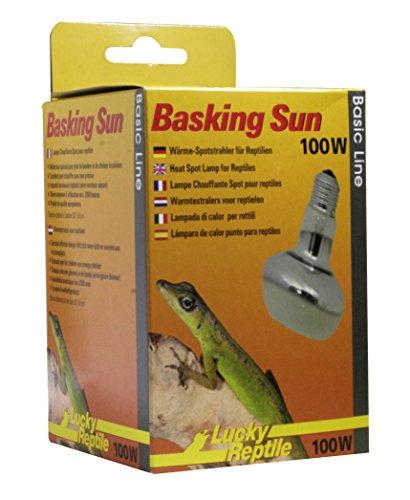Lucky Reptile Basking Sun 100 W, Wärmespotstrahler für Reptilien