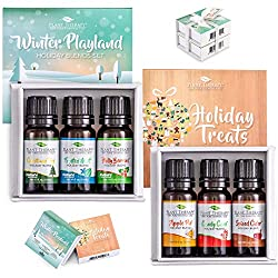Holiday Cleaning and Organizing - Essential Oils