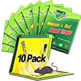 Mouse Pad Mouse Poisons - Best Reviews Guide