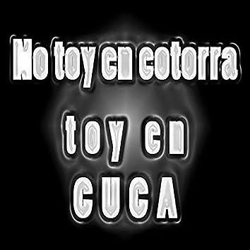 No Toy En Cotorra Toy En Cuca