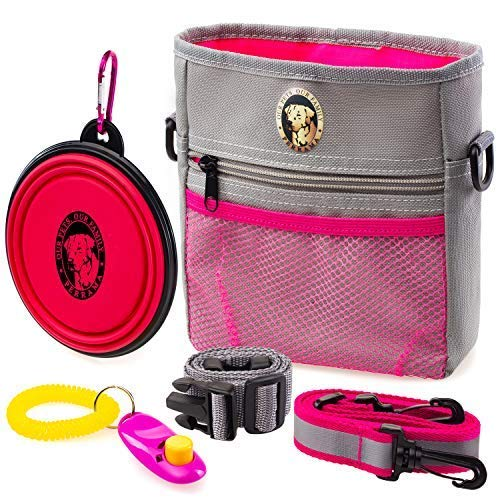 PERRAMA Dog Treat Bag, Training Pouch for Small and Large Dogs with Clicker and Collapsible Food Bowl BPA Free – Pet Treats Tote Bag with Waist and Shoulder Reflective Straps and Belt Clip (Grey)