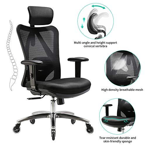 XUER Ergonomics Office Chair