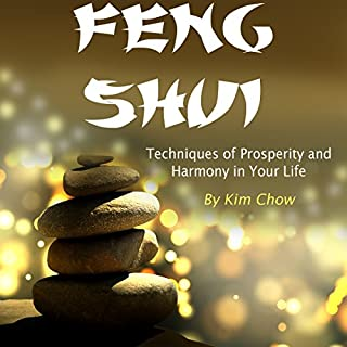 Feng Shui cover art