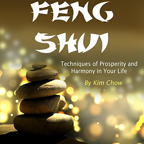 Feng Shui audiobook cover art