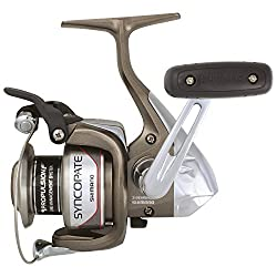 in budget affordable Shimano Syncopate 2500FG Spinning Reel with Front Brake for Freshwater