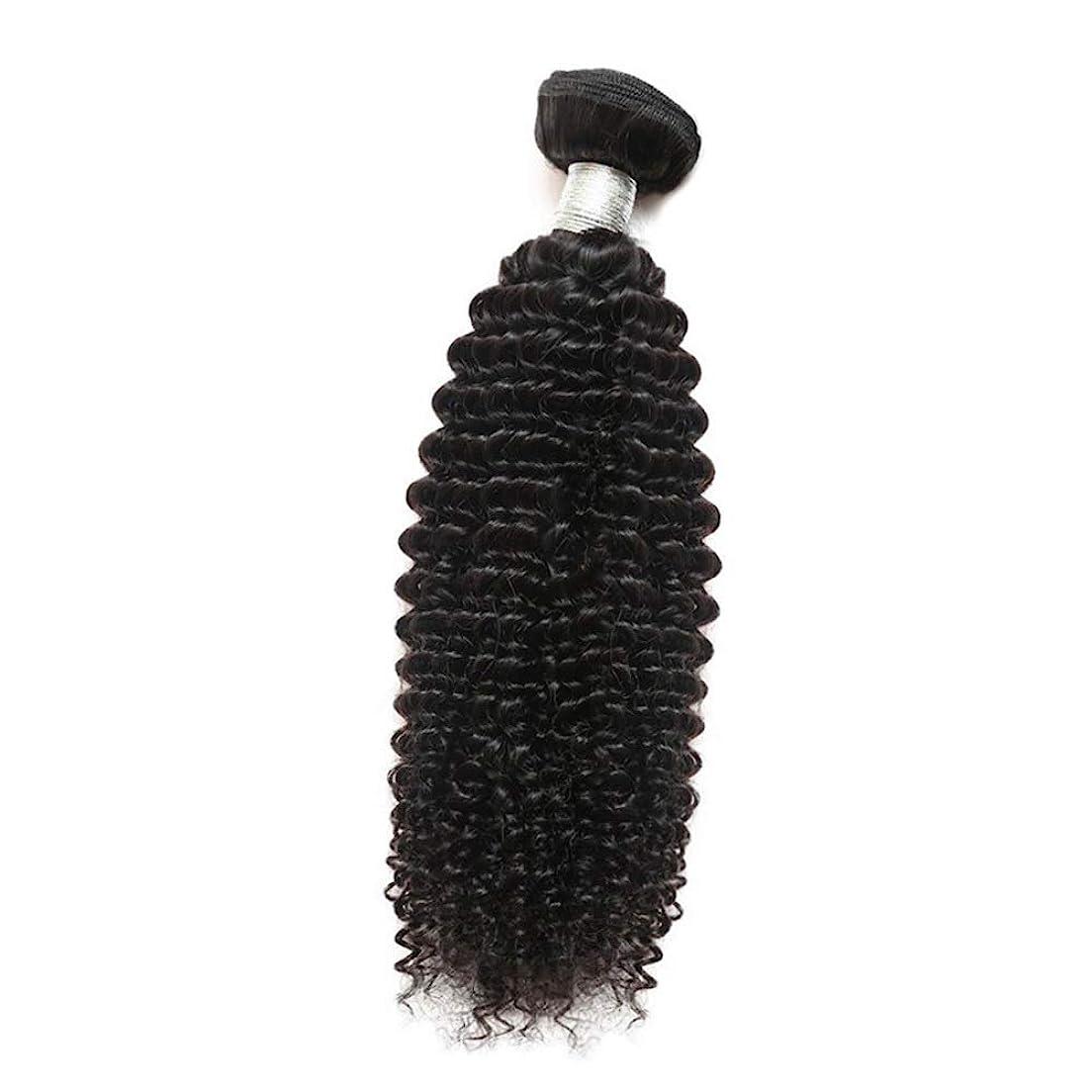 多様体果てしない飼い慣らすYESONEEP 女性のその他の特徴巻き毛人間の髪1バンドルアフリカの小さな巻き毛織り100%未処理のバージン人間の毛髪の合成髪レースかつらロールプレイングかつらストレートシリンダーショートスタイル女性自然 (色 : 黒, サイズ : 24 inch)