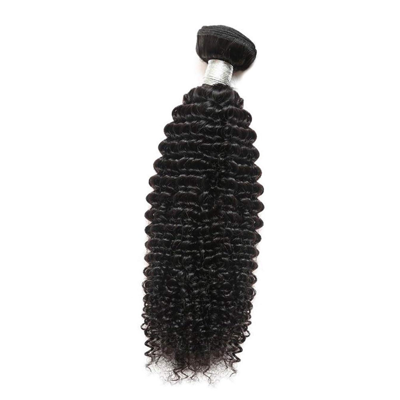 スクリュースラム名声YESONEEP 女性のその他の特徴巻き毛人間の髪1バンドルアフリカの小さな巻き毛織り100%未処理のバージン人間の毛髪の合成髪レースかつらロールプレイングかつらストレートシリンダーショートスタイル女性自然 (色 : 黒, サイズ : 24 inch)