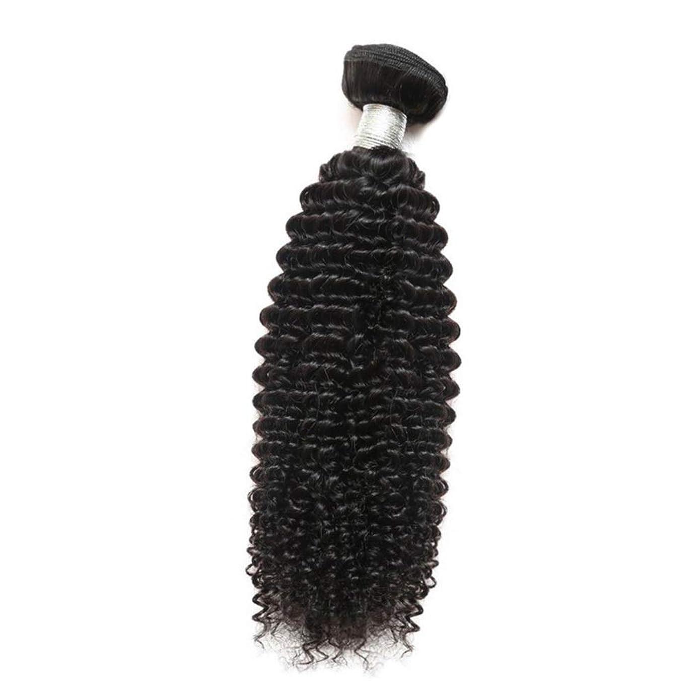発明トレイルハリウッドBOBIDYEE 女性のその他の特徴巻き毛人間の髪1バンドルアフリカの小さな巻き毛織り100%未処理のバージン人間の毛髪の合成髪レースかつらロールプレイングかつらストレートシリンダーショートスタイル女性自然 (色 : 黒, サイズ : 20 inch)