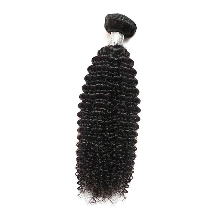 有効な衝突保育園YESONEEP 女性のその他の特徴巻き毛人間の髪1バンドルアフリカの小さな巻き毛織り100%未処理のバージン人間の毛髪の合成髪レースかつらロールプレイングかつらストレートシリンダーショートスタイル女性自然 (色 : 黒, サイズ : 24 inch)
