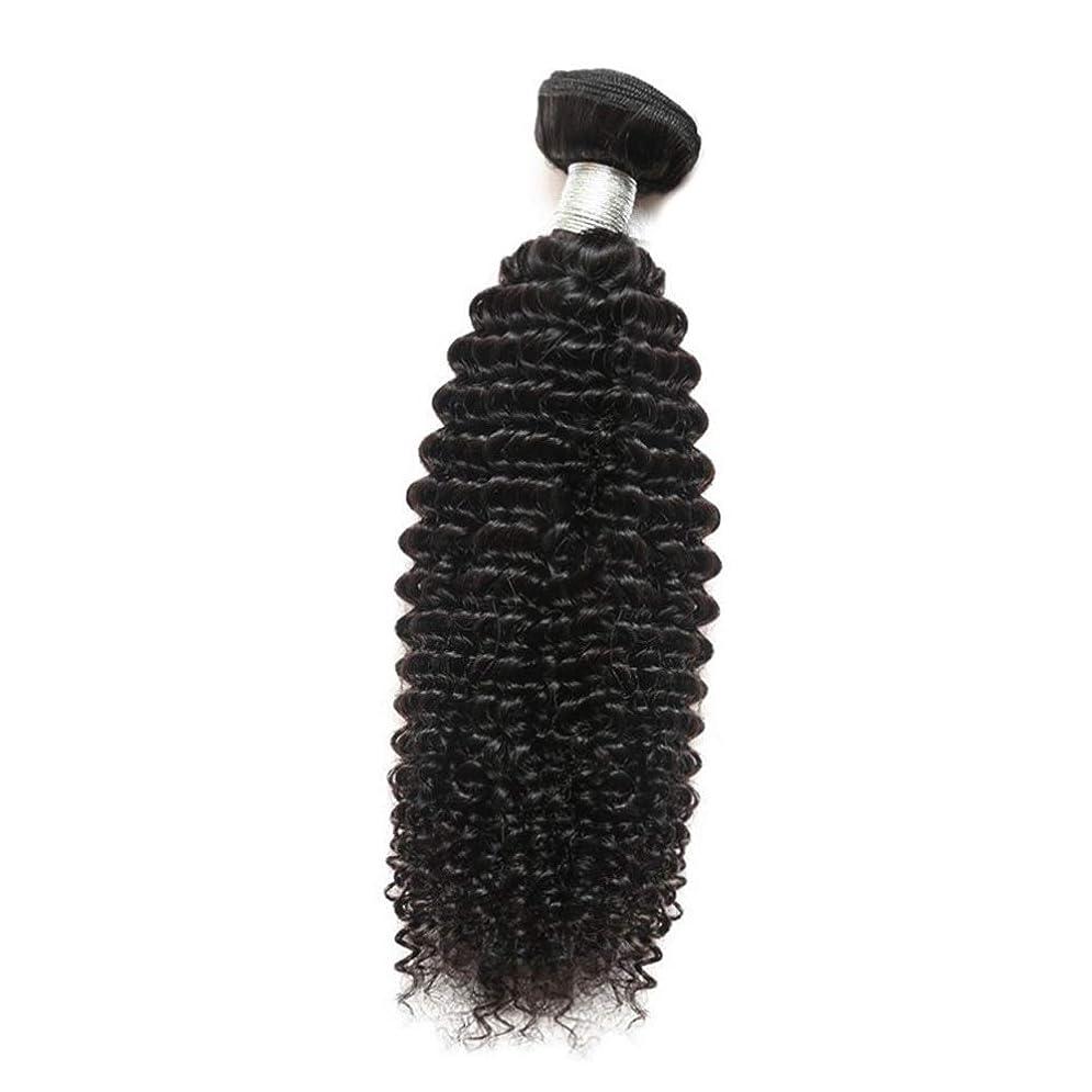 光沢と遊ぶ征服者YESONEEP 女性のその他の特徴巻き毛人間の髪1バンドルアフリカの小さな巻き毛織り100%未処理のバージン人間の毛髪の合成髪レースかつらロールプレイングかつらストレートシリンダーショートスタイル女性自然 (色 : 黒, サイズ : 24 inch)
