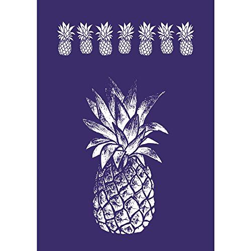 Rayher 45089000 Schablone Ananas, DIN A4, 1 Schablone Plus Rakel, 1 Stück, Div. Materialien, Blau, 34 x 22 x 0.1 cm