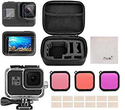 Accessories Kit for Gopro Hero 8 Black, 25 in 1 Bundle with Tempered Glass Hero 8 Screen Lens Protector Waterproof Case Dive Housing Silicone Case Carrying Case Filter Anti-Fog Inserts by iTrunk