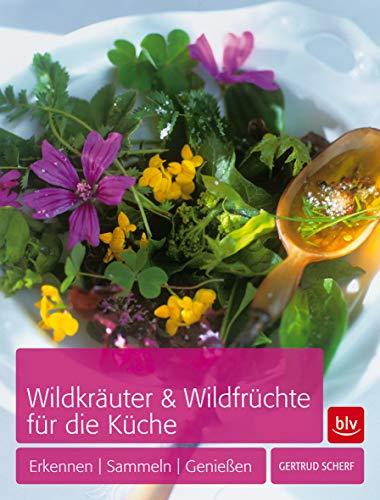 Wildkräuter & Wildfrüchte für die Küche: Erkennen - Sammeln - Genießen