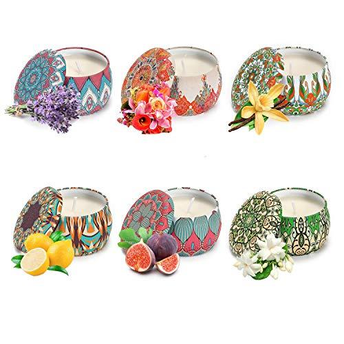 Vinsani Juego de 6 velas perfumadas de lata portátil para mujer, regalo de cera de soja, juego de velas aromáticas, caja de regalo para decoración del hogar