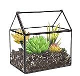 Ferrisland Glass Terrarium House Shape Close Glass Geometric Container Tabletop Succulent Plant Box Planter - 6.3'x6.1'x4.3'