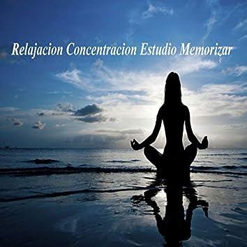 Relajación Concentración Estudio Memorizar