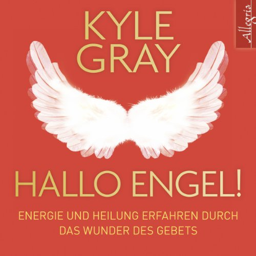 Hallo Engel! audiobook cover art
