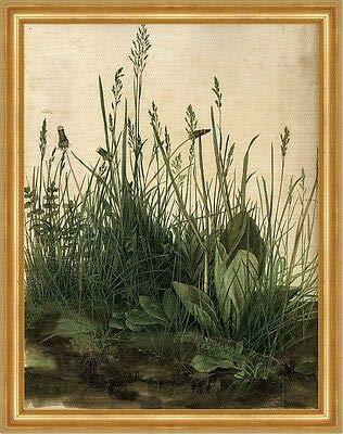 Kunstdruck Das große Rasenstück Albrecht Dürer Wiese Gras Pflanzen Natur H A3 0338 Gerahmt
