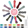 WILLBOND 13 Colors 10 ft Paracord Cord 550 Multifunction Paracord Ropes Tent Camping Outdoor Binding Rope Paracord Combo Crafting Kits with Buckles for Making Bracelet Lanyards Keychain Dog Collar