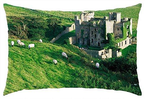iRocket - clifden castle ireland - Throw Pillow Cover (24