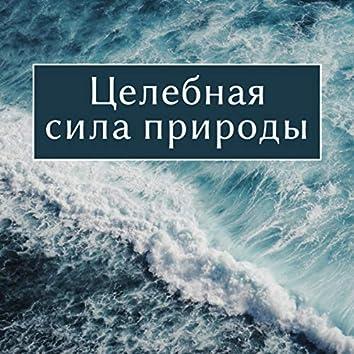 Целебная сила природы - Глубокий релакс, Исцеление звучит для сна, Йога нидра терапия, Вечерняя медитация (Океан, Река, Дождь, Ночной лес)