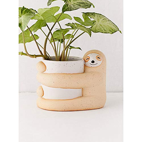 Bcaer Estilo nórdico lindo divertido hogar verde planta suculenta olla forma perezosa porcelana maceta clásica cerámica plantas en maceta suculentas maceta decoración de escritorio macetas decorativas