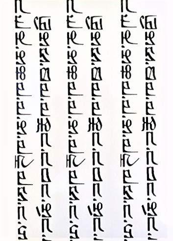 Tatouage écriture hébraïque NOIR tatouages temporaires pour haut du bras et le corps wx045