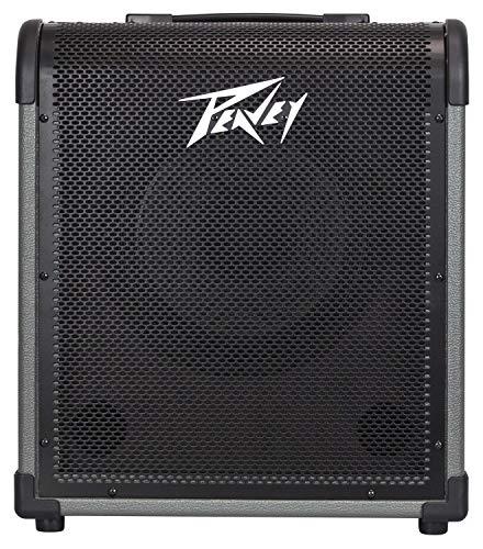 Best Bargain Peavey MAX 100 100-Watt Bass Amp Combo