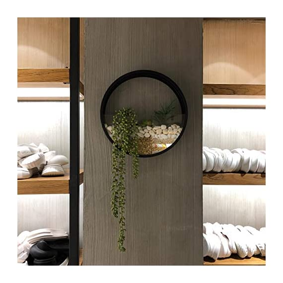 Wistwoxxon 3 Pack Set Wall Planters,Modern Round Glass Wall Planter Succulent Planter Circle Iron Hanging Planter Vase for Herb,Small Cactus Perfect for Balcony, Room and Patio Decor (Black) 4 ♪♪Appearance and Design:Round metal hanging wall planter with glass baffle for planting real or faux small plants, flowers, succulents, air plants or cacti, Every part has been carefully designed, simple curves outline the simple and stylish atmosphere, Add a splash of color and style to your indoor spaces ♪♪Attention & Installation: Mounting with screws or wall hooks, ATTENTION: We prefer succulent plants,air plant,faux plants and some plants which doesn`t need much water. Because water will drip from 3 mount holes on the back of wall planter. ♪♪Material and Size: Stabilized iron alloy metal with powder coating ensures long lasting color and withstands extreme weather conditions. Tempered and limpid glass feasts your eyes, add visual intrigue to this wall hanging. Do not rust and no unpleasant smell. Size:Large:Thickness:5cm/1.9inch Diameter:30cm/11.8inch, Medium:Thickness:5cm/1.9inch Diameter:20cm/7.8inch, Small:Thickness:5cm/1.9inch Diameter:15cm/5.9inch